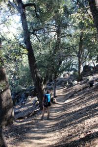 Palomar Observatory Trail